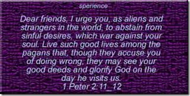 First Peter 2 11 and 12 verses